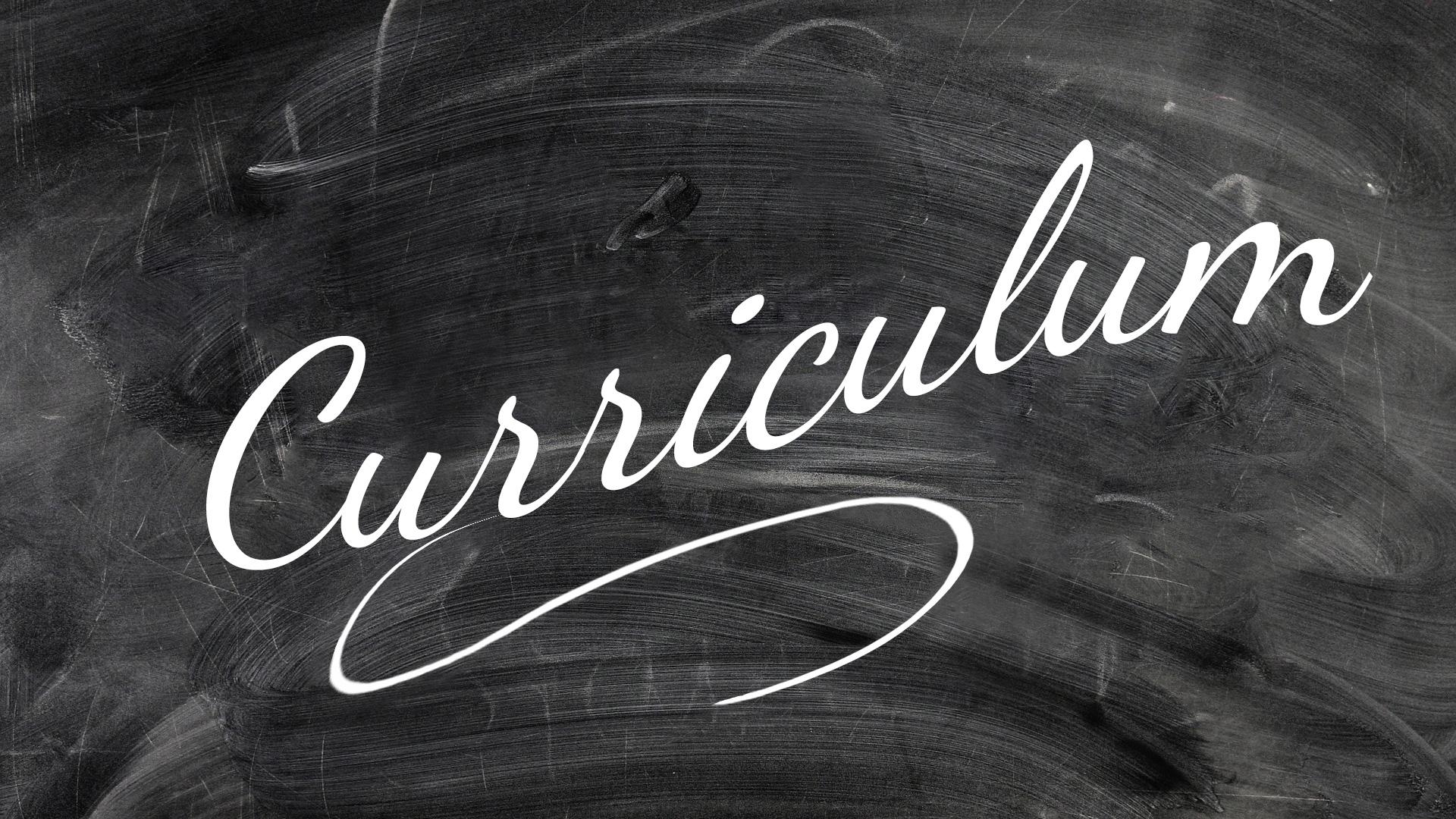 Anna Carignani - curriculum